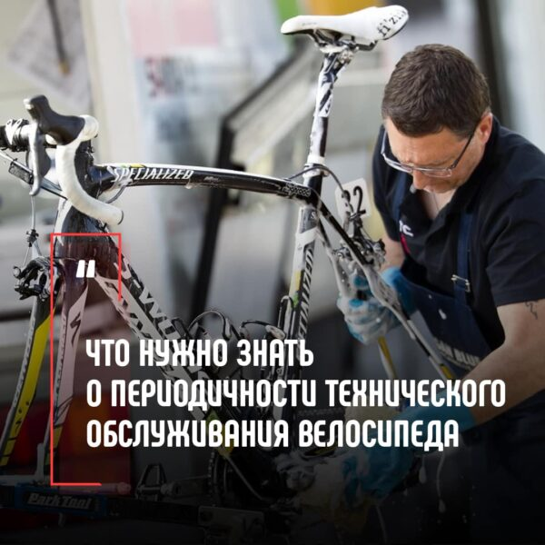 Что нужно знать о периодичности технического обслуживания велосипеда